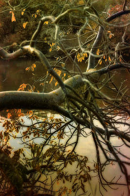 Photograph - Fall At The Creek by Ellen Heaverlo
