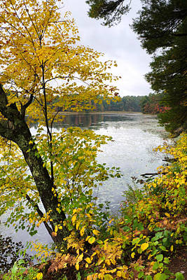 Photograph - Fall At The Lake by Christina Rollo