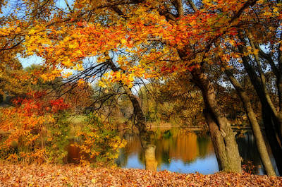 Fall At The Pond 2 Art Print by Lynn Bauer