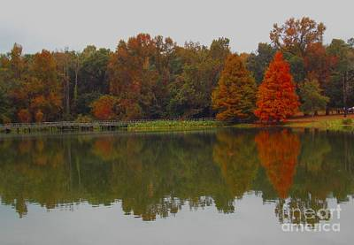 Photograph - Fall At Tom Brown Park by Annette Allman