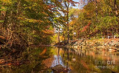 Fall At Valley Creek  Art Print by Rima Biswas