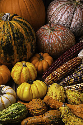 Gourds Photograph - Fall Autumn Abundance by Garry Gay