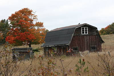 Art Print featuring the photograph Fall Barn by Paula Brown