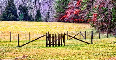 Photograph - Fall Behind The Fence By Diana Sainz by Diana Raquel Sainz