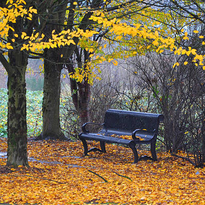 Photograph - Fall Bench by Kirt Tisdale