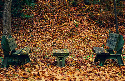 Photograph - Fall Benches by Shelby  Young