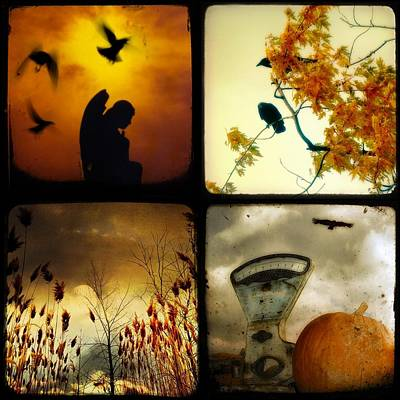 Autumn Scenes Digital Art - Fall Blush Collage by Gothicrow Images