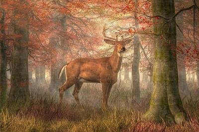 Fall Buck Art Print by Daniel Eskridge