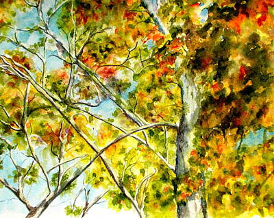 Tree Canopy Painting - Fall Canopy by Nicole Curreri  sc 1 st  Fine Art America & Tree Canopy Paintings (Page #4 of 11) | Fine Art America