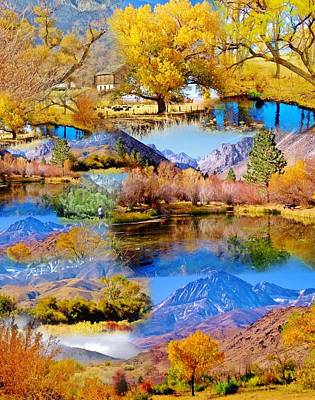 Photograph - Fall Collage by Marilyn Diaz