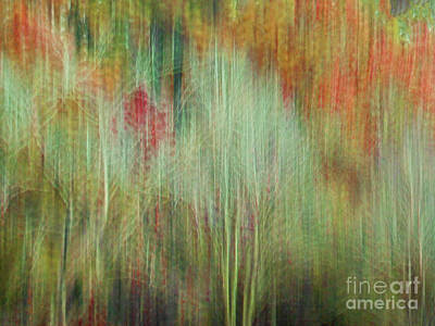 Fall Color Abstract 2 Art Print