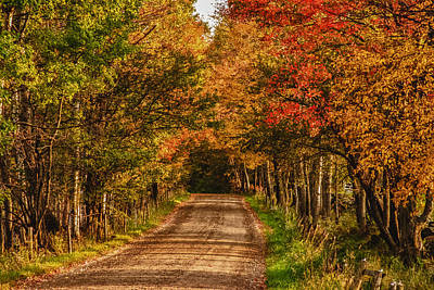 Fall Color Along A Dirt Backroad Art Print by Jeff Folger