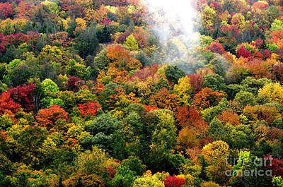 Truck Art - Fall Color and Mist by Thomas R Fletcher