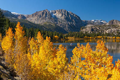 Photograph - Fall Color At June Lake by Joe Doherty