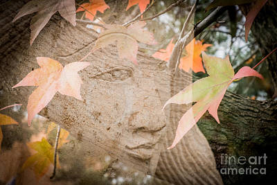 Photograph - Fall Color Face by Marianne Jensen