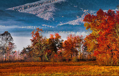 Fall Color Feast Art Print by Dave Bosse