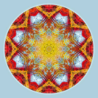 Photograph - Fall Colors Mandala 1 by Beth Sawickie