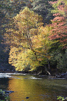 Photograph - Fall Color On The River by rd Erickson