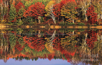 Art Print featuring the photograph Fall Color Reflected In Thornton Lake Michigan by Dave Welling