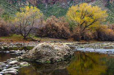Photograph - Fall Color Reflections by Dave Dilli