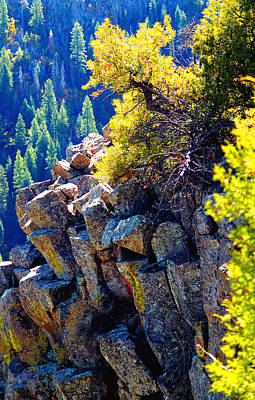 Jerry Sodorff Royalty-Free and Rights-Managed Images - Fall Color Rocks 23542 by Jerry Sodorff