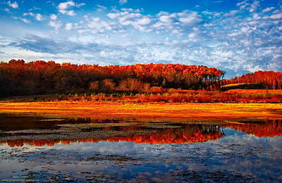 Fall Color Print by Sean Kreck