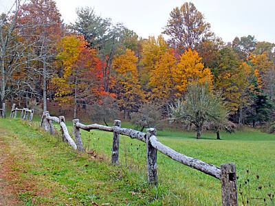 Photograph - Fall Colors And Old Fence by Duane McCullough