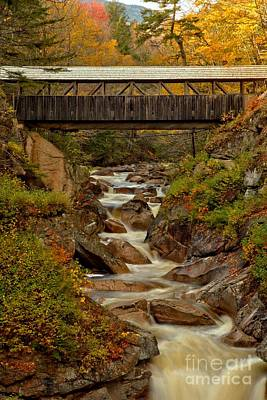 Photograph - Fall Colors At Sentinel Pine Bridge by Adam Jewell