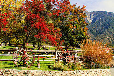 Photograph - Fall Colors At The Apple Farm by Diana Raquel Sainz