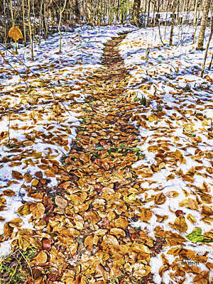 Abandoned Elkmont Wall Art - Photograph - Fall Colors Autumn - Path Through The Snow by Rebecca Korpita