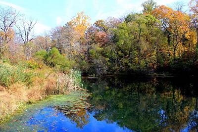 Photograph - Fall Colors by Deborah  Crew-Johnson