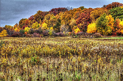 Photograph - Fall Colors I by Roger Passman