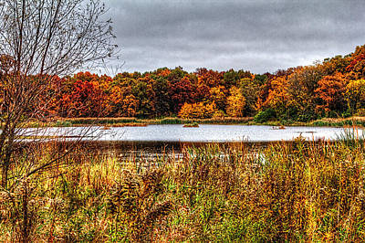 Photograph - Fall Colors IIi by Roger Passman