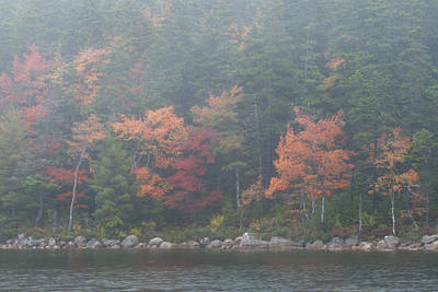 Photograph - Fall Colors In Acadia National Park Maine Img 6483 by Greg Kluempers
