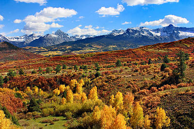Realistic Art Photograph - Fall Colors In Ridgway Colorado by Brett Pfister