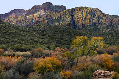 Photograph - Fall Colors In The Desert - Horizontal by Dave Dilli