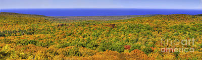 Carp Photograph - Fall Colors In The Porcupine Mountains by Twenty Two North Photography