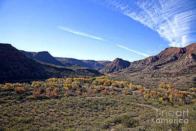 Photograph - Fall Colors In The Verde Canyon Along The Verde River In Arizona by Ron Chilston