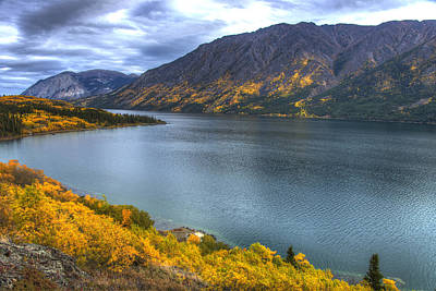 Photograph - Fall Colors In The Yukon by Mark Newman