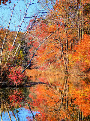 Photograph - Fall Colors by JC Findley
