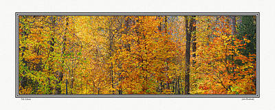 Photograph - Fall Colors by John Bushnell