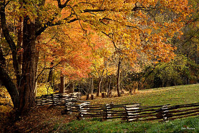 Fall Colors, Asheville, North Carolina Art Print