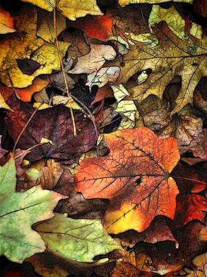 Fall Colors Art Print by Lyle Hatch