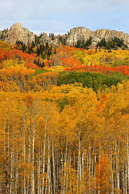 Photograph - Fall Colors Near Crested Butte by Daniel Woodrum