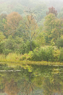 Fall Colors On Small Pond In Vienna Maine Art Print by Keith Webber Jr