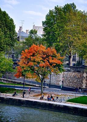 Photograph - Fall Colors On The Seine by Matt MacMillan