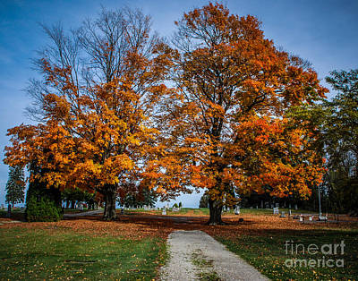 Photograph - Fall Colors Over Gravesites by Grace Grogan