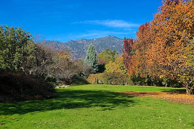 Photograph - Fall Colors by Richard J Cassato