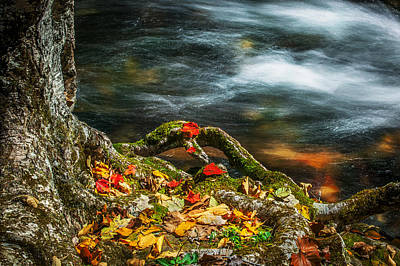 Photograph - Fall Colors Stream Great Smoky Mountains  by Rich Franco