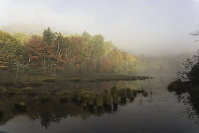 Photograph - Fall Colours In The Morning Mist by Josef Pittner